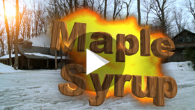 maple _syrup